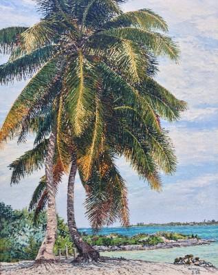 Majestic Palms, 1988